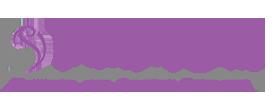 Touch of Silk - Sheffield Logo - Widget Company Logo 002